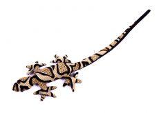 Pískové zvířátko ještěrka TD0003-005