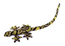 Pískové zvířátko ještěrka TD0003-001