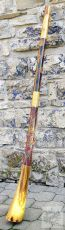 Didgeridoo eukalyptus